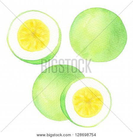 Passion fruit or maracuya set. Hand-drawn fruits - colorful maracuyas on the white background. Real watercolor drawing.