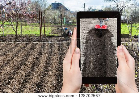 Farmer Photographs The Plowing Of Garden Ground