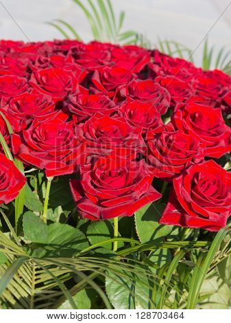 bright dark red roses with green leaves in a large bouquet top view