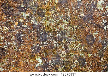 Rusted multicolored rusted metal plate background texture