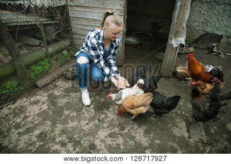 Young pretty blonde hand-feeding her chickens squatting on the backyard and smiling