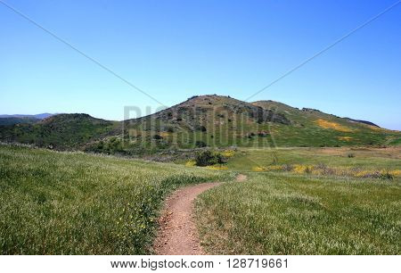 Hiking trail leading through a meadow toward rolling hills, California