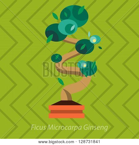 Garden plants.Potted flowers in the garden vector illustration.Potted garden green plants. Greengouse garden plants and flowers.Planting greenery plants.Tropical garden plants.outdoor tree plants.