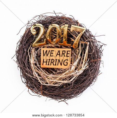 We are Hiring in 2017 with nest