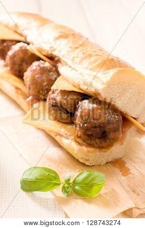 Meat Submarine