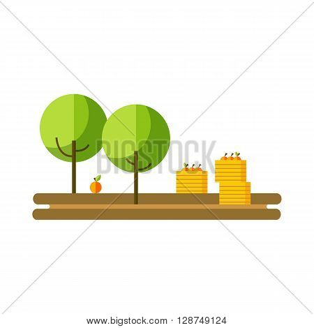 Flat vector illustration apple orchard and harvest fruit. Apple orchard summer or autumn. Apple harvest and apple orchards boxes of fruit. Apple orchard flat icon.