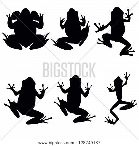 Vector frogs silhouette on the white background. Six frog silhouettes. Collection of vector frogs silhouette isolated. Vector silhouettes of frogs top view