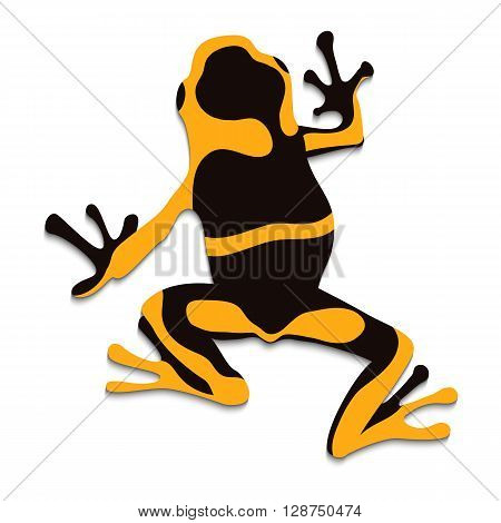 Poison frog flat design. Vector illustration of frog on white background. Poisonous frog. Isolated tree frog epipedobates tricolor top view