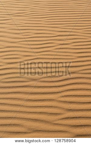 Close-up view of sand dune patterns in the sahara desert Morocco
