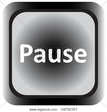 Icon the button with the pause sign