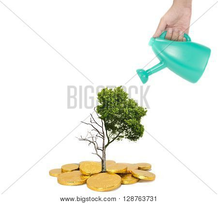 concept of business recovery with growth tree in right side