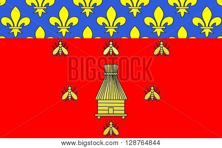 Flag of Brioude is a commune in the Haute-Loire department in the Auvergne region in south-central France. It lies on the banks of the River Allier a tributary of the Loire.