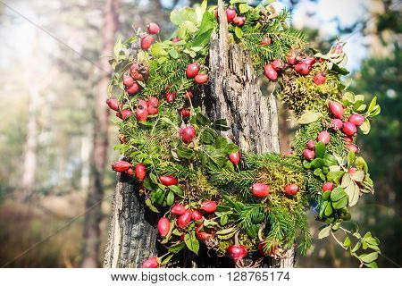 wreath of wild rose and tree branches in the autumn forest