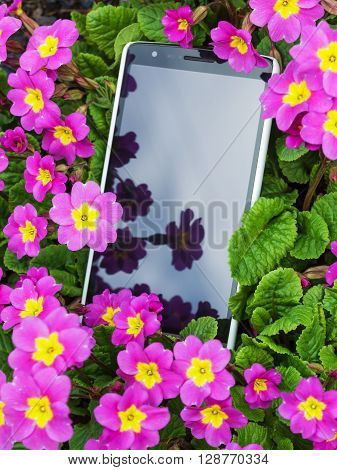 Mobile phone in pink flowers. Lose the phone outdoors