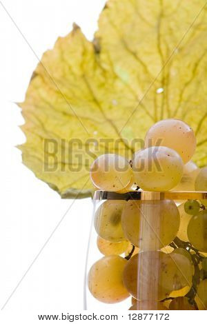 grapes on glass