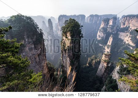 Zhang jia jie National Forest Park, Hunan, China