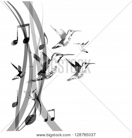 Vector illustration of music notes with hummingbirds