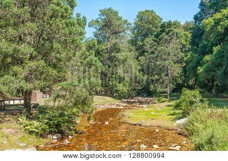 Jubilee Creek a picnic spot in the Knysna Forest near Millwood