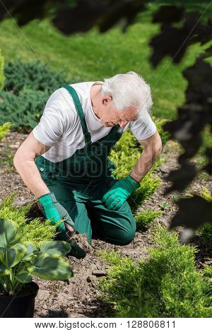 Gardener Digging In The Ground