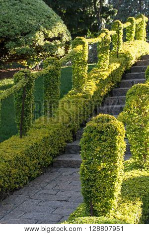 Green path with rock stairway steps and handrail