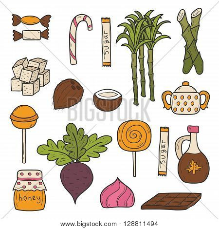 Cartoon hand drawn illustration with sugar objects: sweets sugar cane maple syrup honey coconut sugar chocolate lollipop. Kinds of sugar