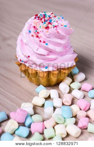 Cup Cake With Pink Cream And Mini Marshmallows