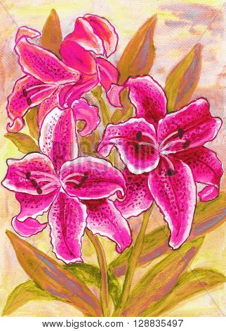 Pink lilies hand painted picture in watercolour.