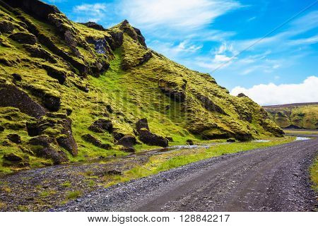 The summer blossoming Iceland. Canyon Pakgil - green grass and moss on fantastic rocks. On canyon there is dirt road