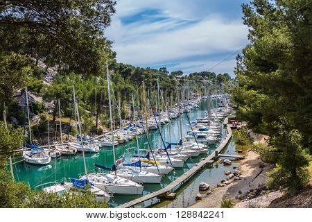 Good weather in May. White sailboats moored in rows near woody shore. Calanque National Park - small fjords between Marseille and Cassis