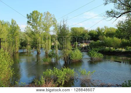 flooded homes and trees in a flood