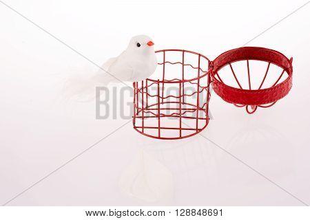 White color fake Bird near a red birdcage