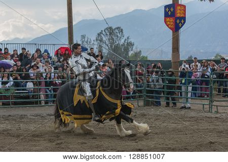 Actor As Medieval Knight