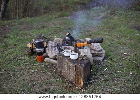 Camping In The Woods.
