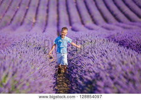 Happy baby boy walking in lavender summer field near Valensole. Provence, France.