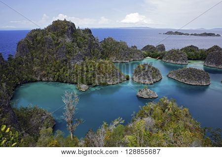 View over Pianemo. Fam Raja Ampat Indonesia