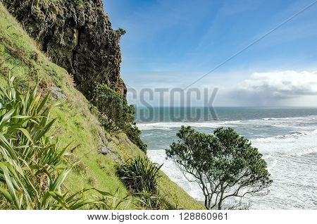 View of Piha beach from the slopes of Lion's rock