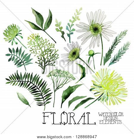 Huge watercolor green floral collection isolated on white background. Vector floral design