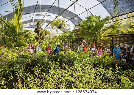 CHIANG MAI, THAILAND - FEBRUARY 1, 2016: Unidentified people at the Bai Orchid and Butterfly Farm at Chiang Mai Thailand. Orchid and butterfly farms are popular tourist attractions in Thailand.