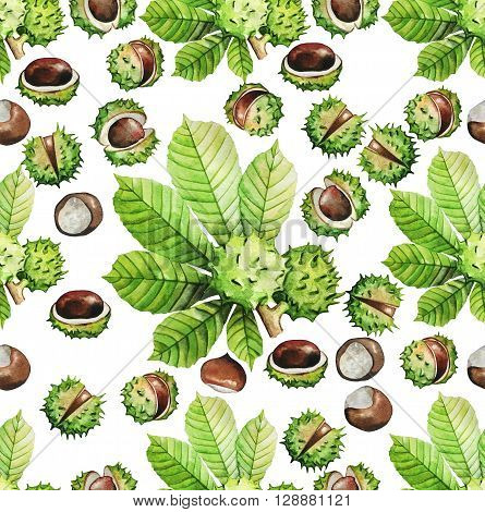 Watercolor chestnut seamless pattern. Floral eco design