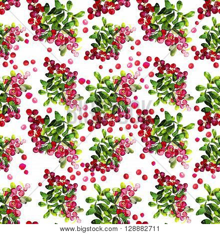 Watercolor cranberry seamless pattern. Christmas floral design