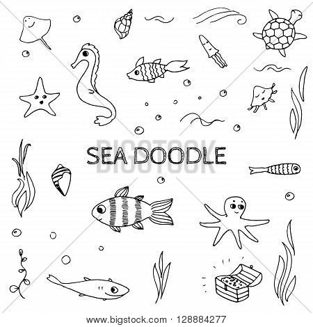 Doodle sea ocean life elements. Sketch fishes sea shells and other underwater creatures.