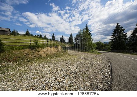 Summer road in a beautiful forest and pasture.