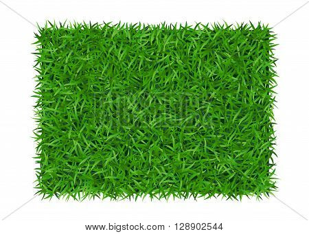 Green grass background. Lawn nature. Abstract field texture. Symbol of summer plant eco and natural growth or fresh. Design for card banner. Meadow template for print products. Vector Illustration