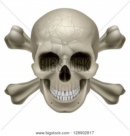 Skull and Crosbones -illustration of a scratch human skull with crossed bones behind it isolated on white background