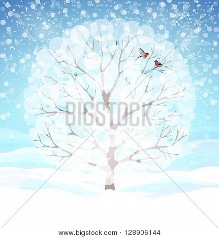 Beautiful winter background with blue skies, snowy tree and two bullfinches