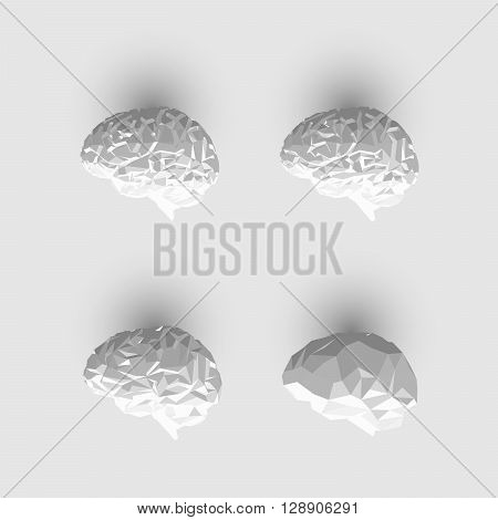 Set of Low Poly or Paper Brain. Human Brain Illustration. Vector Brain