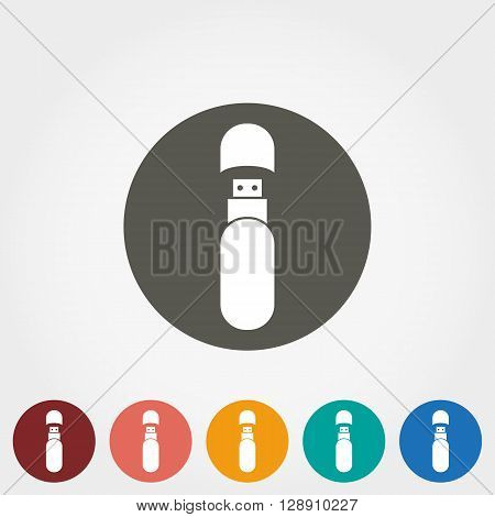 USB Stick Icon for web and mobile application. Vector illustration on a button. Flat design style.