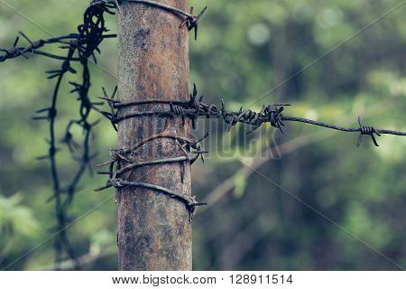 Barbed wire on rusty iron tube on blurred green background