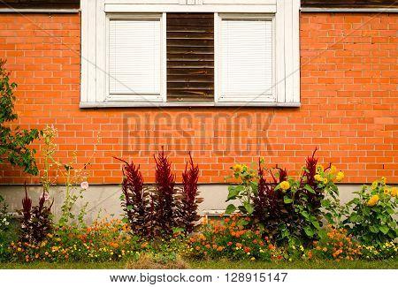 Vintage window on brick wall and garden underneath.