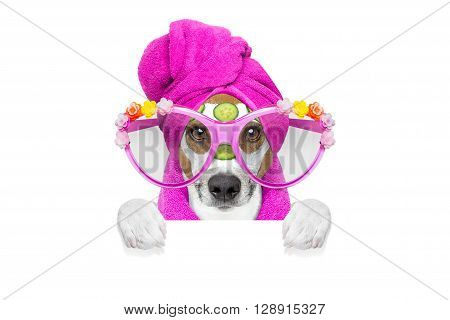 Dog Wellness Spa Center